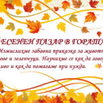 Thanksgiving-Day-Frame-Vector-Fall-Leaf-Border-PNG-Clipart